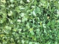 Dried leaves moriga